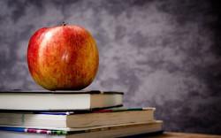 """בסופו של דבר: לא יהיו שינויים באיזורי הרישום לשנת הלימודים תשע""""ז"""